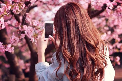 明るい色の髪の毛
